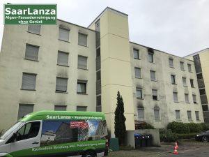 Fassadenreinigung Saarbrücken, Algen und Pilze an der Fassade