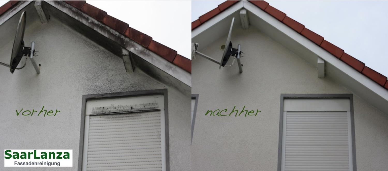 Schimmelbeseitigung an der Hausfassade
