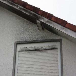 Schwarze Stellen über dem Fenster