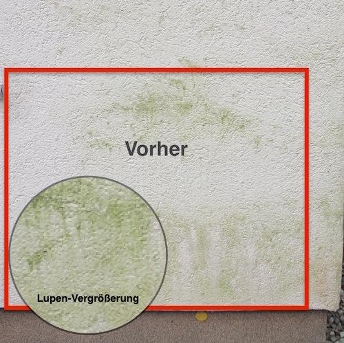 Probe-Fassadenreinigung