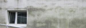 Schwarze Algenverschmutzung an der Hausfassade
